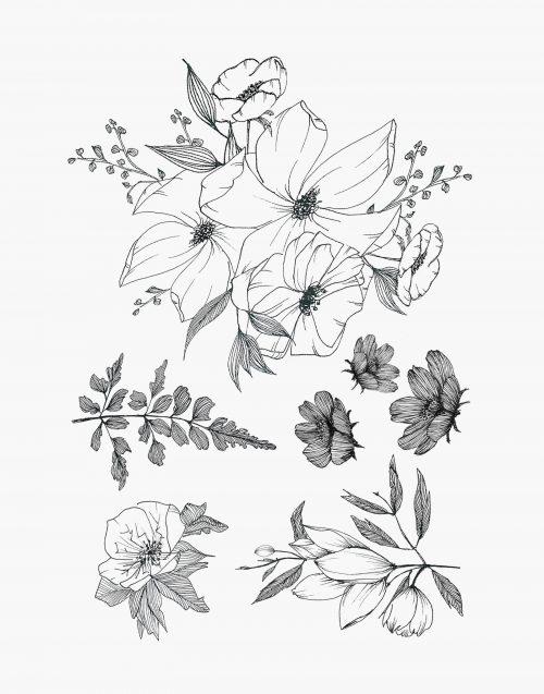 monocotylédone tatouage éphémère